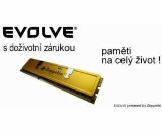 EVOLVE DDR III SODIMM 2GB 1333MHz EVOLVE Zeppelin GOLD (c...